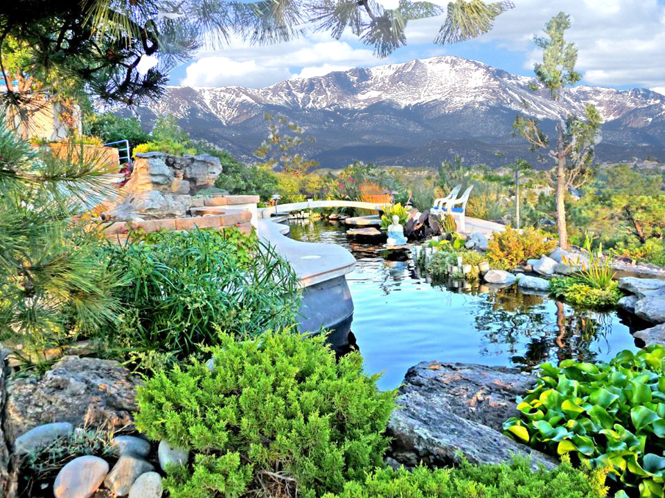 Pond and mountain